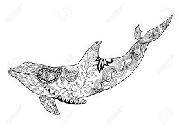 Cute Dolphin Adult Antistress Coloring Page Black White Hand