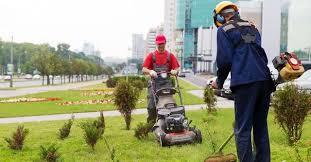 lawn care services in north port fl