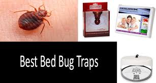 top 5 best bed bug traps updated 2020