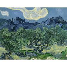 Artverse Van Gogh S Olive Trees Removable Wall Decal Wayfair