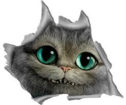 Cheshire Cat Decal Cheshire Cat Car Sticker Bumper Sticker Car Accessories Car Window Decal Funn Cat Decal Funny Car Decals Car Bumper Stickers