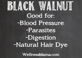 how to use black walnut hull wellness