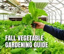 fall vegetable gardening guide for texas