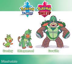 One artist's cool designs of the three new starter Pokémon