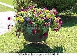 Aimer, chaudron, vase, décoré, fleurs, jardin. Jardin, printemps ...