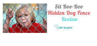Sit Boo Boo Hidden Dog Fence Review