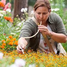 get essential gardening tips at garden