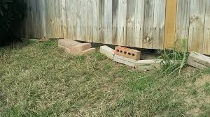 Neighbor S Dog Is Digging Under Our Shared Fence How Would You Resolve This Homeimprovement