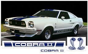 Graphic Express 1975 77 Cobra Ii Complete Side Stripe Kit