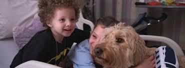 Adopt a pet near you