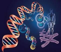 全球 基因 合成 服务 市场 综述 - 科技 频道 - 手机 搜狐