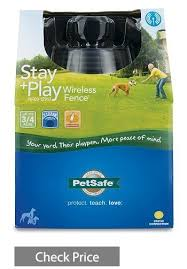 Best Wireless Dog Fence October 2020 Buyer S Guide And Reviews