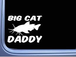 Amazon Com Yilooom Big Cat Daddy M379 6 Inch Sticker Decal Catfish Stink Bait Fishing Vinyl Die Cut Bumper Sticker Decals For Car Window Laptop Home Kitchen