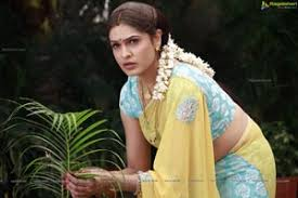 Aditi Agarwal in Saree HD Gallery, Images