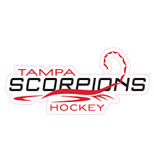 Scorpions Car Decal Rinkside Tampa