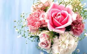 صور زهور 2020 ورود رومانسية اجمل زهور الحب مصراوى الشامل