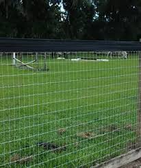 Wire Fencing Steelyaccess