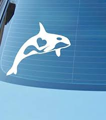 Amazon Com Cliffbennett Orca Whale Love Car Or Laptop Vinyl Decal Orca Decal Or Sticker Killer Whale Decal Keiko Tilikum Lolita Free The Orcas Nw Home Kitchen