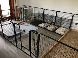 30 Best Indoor Dog Kennel Ideas The Paws