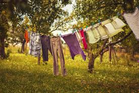 fair trade and free clothing