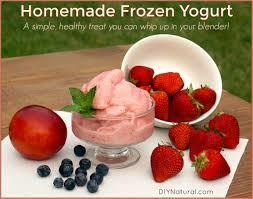 homemade frozen yogurt recipe a simple