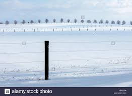 Windbreak Trees Farm High Resolution Stock Photography And Images Alamy