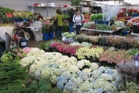 san francisco flower mart 2020 all