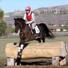 Horse Tip Daily #1173 by EquestrianCollections.com – Tamra Smith ...