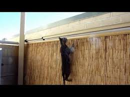 How To Diy Cat Proof A Garden Fence By Protectapet Youtube Cat Fence Cat Proofing Cat Proof Balcony