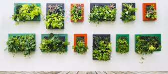 vertical gardening best products on