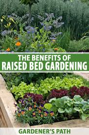 raised bed gardening benefits what do