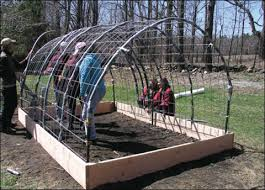 How To Build A Cattle Panel Hoop House Countryside