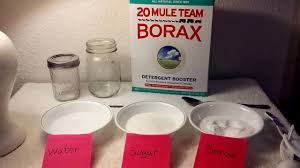 borax and diy ant trap with