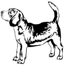 Amazon Com Cute Beagle Vinyl Decal Sticker Dog Pet Black Automotive