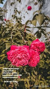 jadilah seperti bunga yang memberi keharuman bahkan kepada tangan