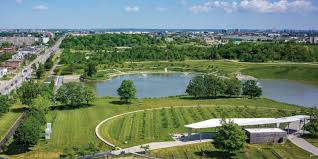 Image result for downsview park BASEBALL