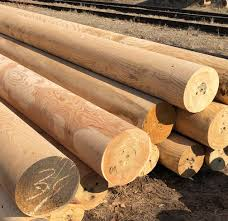Machine Rounded Round Or Half Round Wooden Poles Siberian Larch Pine Cedar Directly From Manufacturer Buy Angara Pine Siberian Larch Cedar Wood Pole Round Half Wooden Utility Fence Construction Product On Alibaba Com