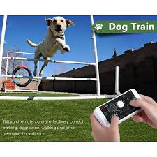 Walfront Wireless Electric Dog Fence Containment System 2 In 1 Pet Fence System Dog Training Collar Waterproof Rechargeable For All Size Dogs Walmart Canada