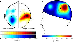 Motivation and Motor Control: Hemispheric Specialization for ...