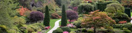 butchart gardens the great canadian