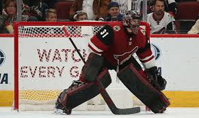 Arizona Coyotes recall G Adin Hill from Tucson Roadrunners
