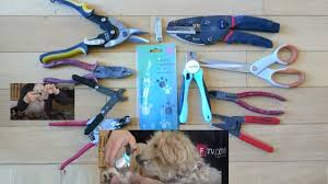 tools or dog nail clippers