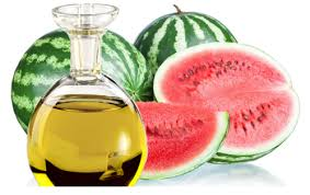 water melon oil तरब ज क ब ज क त ल