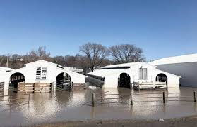 More than 1 million acres of US cropland ravaged by floods