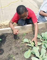 Ida Burns garden grows with $3,000 learning grant