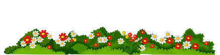 Poppy Clipart Fence Border Poppy Fence Border Transparent Free For Download On Webstockreview 2020