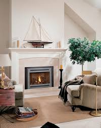 fireplace inserts georgetown