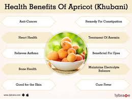 apricot khubani benefits and its side