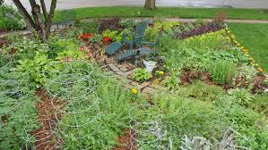 edible landscaping ideas for front yard