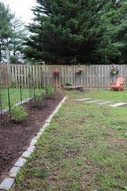 Before And After Can I Plant A Blueberry Bush We Re Going To Find Out